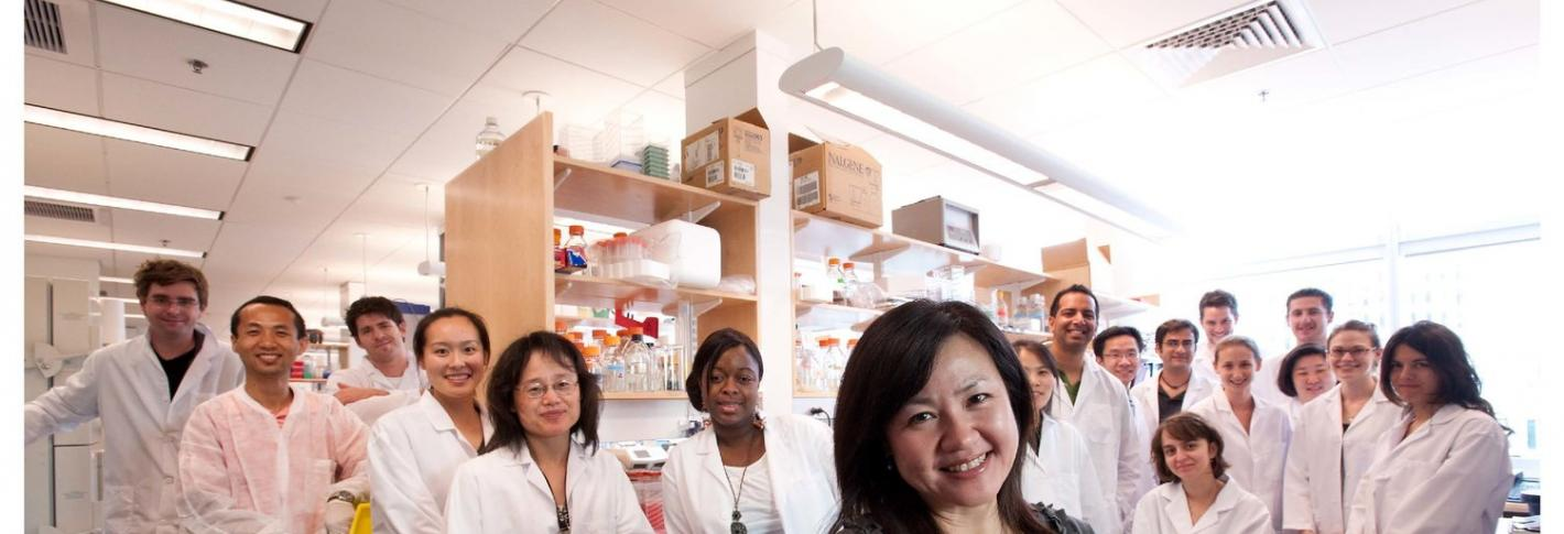 Picower Director Li-Huei Tsai with her Laboratory