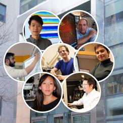 A collage of the seven participating researchers
