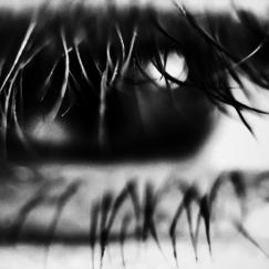 A black and white close up photo of an eye