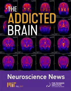 Cover of the fall 2017 newsletter, the addicted brain