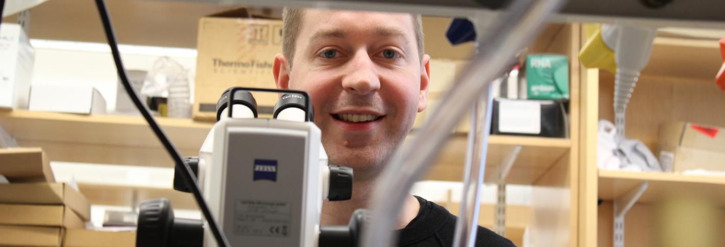 Steve Flavell looks up from a microscope in his lab and smiles