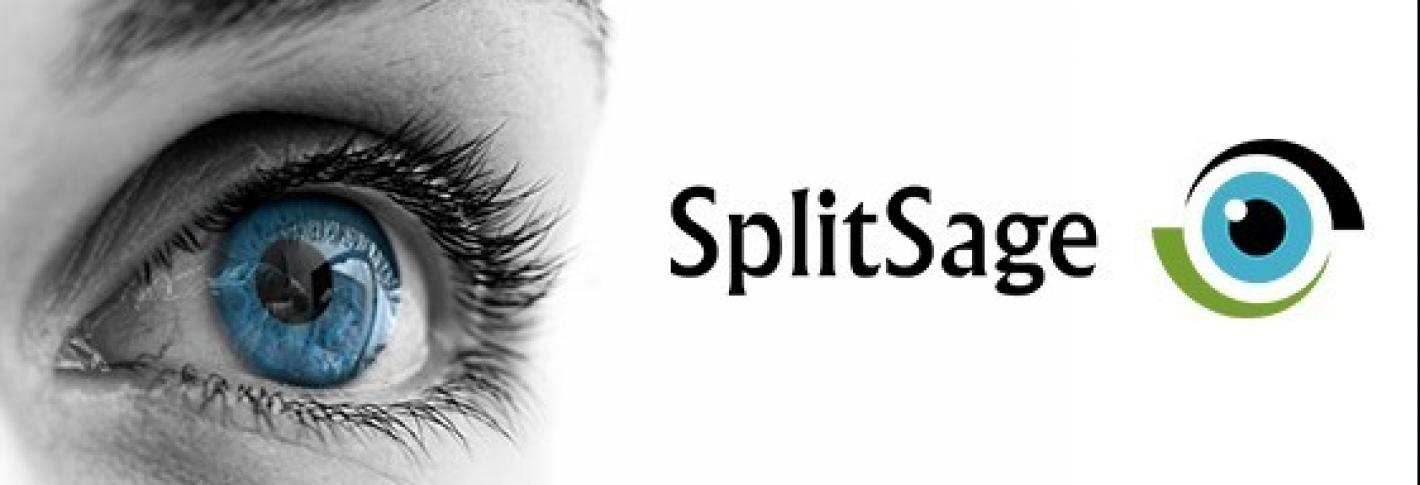 The splitsage logo is paired wih a gazing eye.