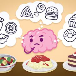 A cartoon of a brain viewing a three course meal and remembering similar past experiences