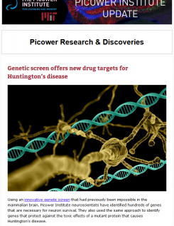 A screenshot of the newsletter featuring a Huntington's disease headline and an illustration of a neuron with DNA